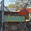 Remmogo-004.JPG